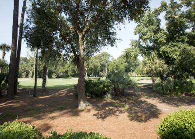 Rear golf view